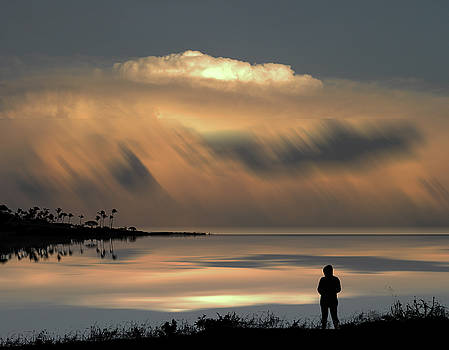 4459 by Peter Holme III