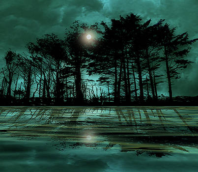 4466 by Peter Holme III