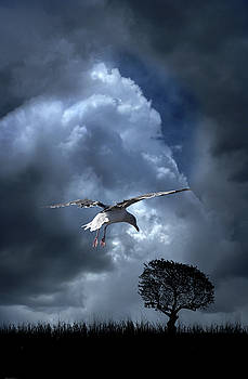 4472 by Peter Holme III