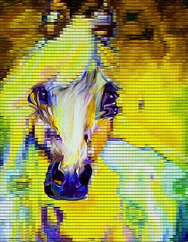 46 Horse by Nixo by Nicholas Nixo