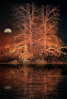 4651 by Peter Holme III