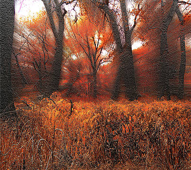 4652 by Peter Holme III