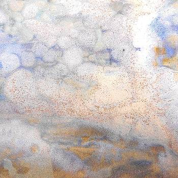 47. v2 Blue White and Organic Organic Abstract by Maggie Minor