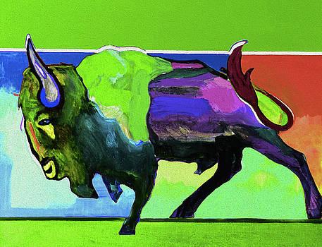 48 Buffalo by Nixo by Nicholas Nixo