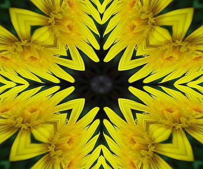4.Abstract.1 by Ramona Barnhill