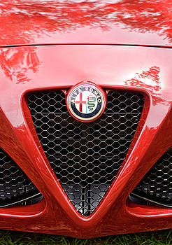 Alfa Romeo 4C Grille and Badge by Nate Heldman
