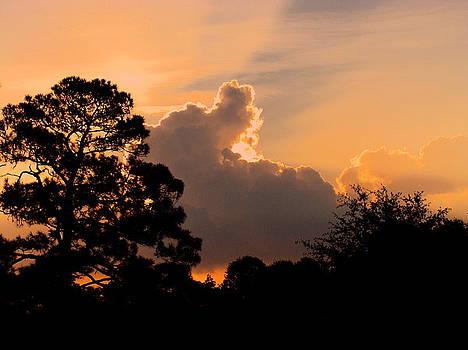 4.Sunrise by Ramona Barnhill