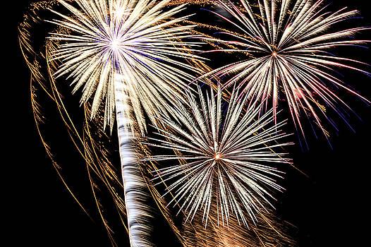 4th of July Fireworks by Joni Eskridge
