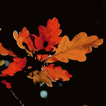 James Hill - Autumn Leaves