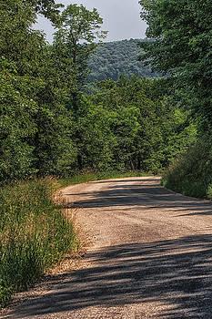 Dan Traun - Back Road