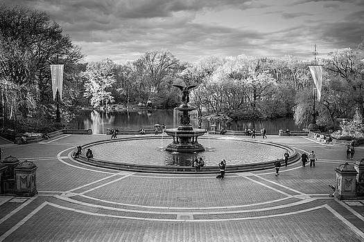 Bethesda Fountain by Robert J Caputo