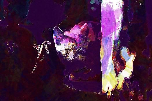 Cat Eye Injury One Eye Village  by PixBreak Art
