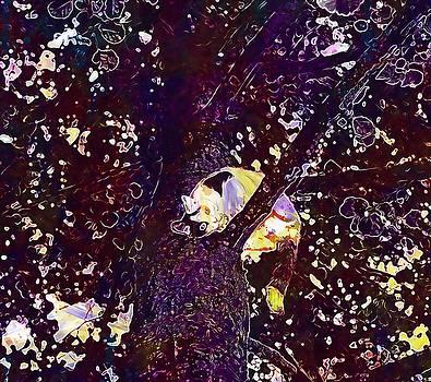 Cat Tree Climb Young Cat Pet  by PixBreak Art