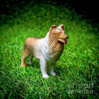 Dog figurine by Bernard Jaubert