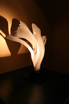 Il Fiore E L'aquila  by Emanuele Rubini