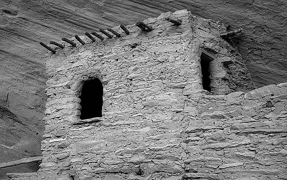 Keet Seel Ruins by Larry Pollock