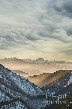 Landscape by Jelena Jovanovic