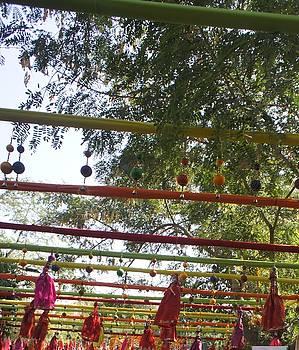Literature Festival Jaipur by Baljit Chadha