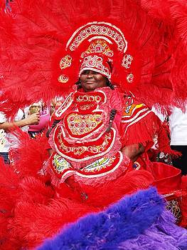 Mardi Gras Indians by Jerome Holmes