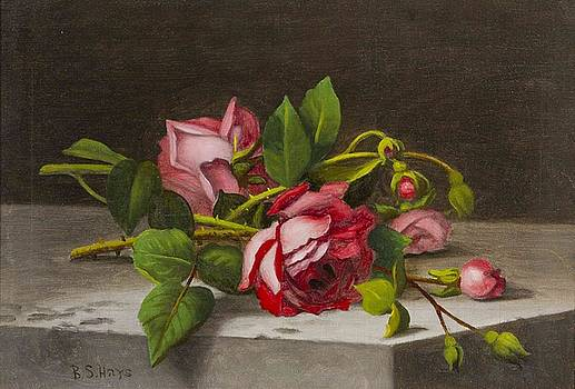 Still Life of Roses by MotionAge Designs