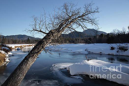 Erin Paul Donovan - Swift River - White Mountains New Hampshire USA