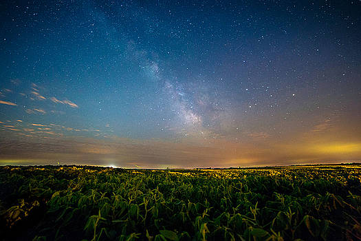 50 Miles from Chicago on a Summer Night by Jackie Novak