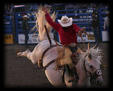 TNT Images - The Rodeo #2 - 500231