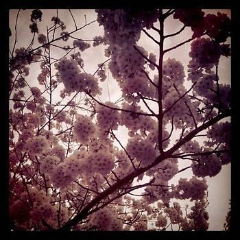 Instagram Photo by Nicole Schmitt