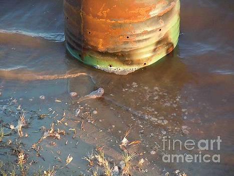 55 Gallon Drum in Surf by David Frederick