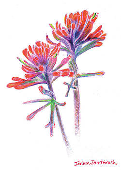 5x7paintbrush by Shelley Myers