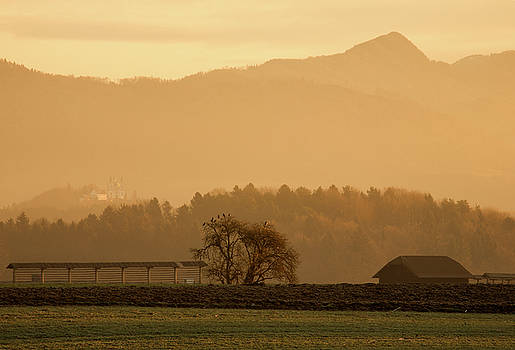 Alpine sunrise by Ian Middleton