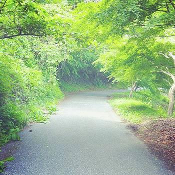 @bowsanpo  #nature by Bow Sanpo