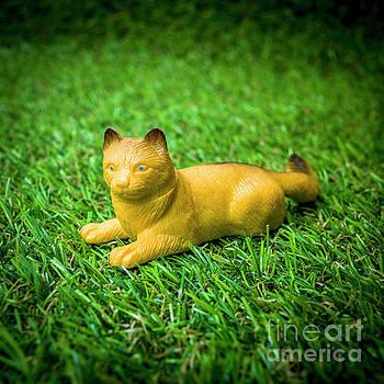 Cat figurine by Bernard Jaubert