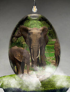 Elephant Art by Marvin Blaine