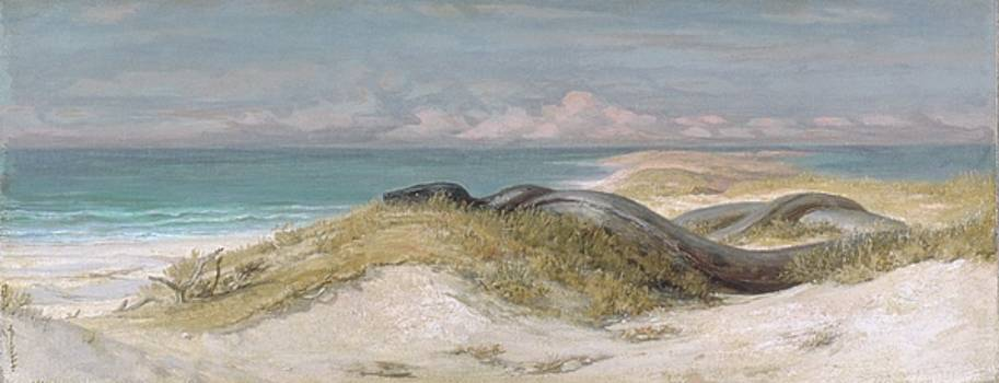 Lair of the Sea Serpent by Elihu Vedder