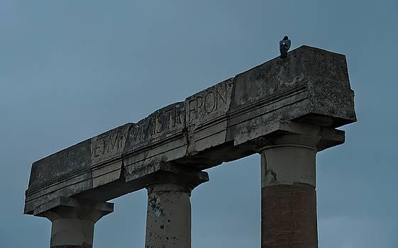 Pompeii Italy by Cendrine Marrouat