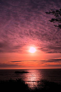 Trinidad Sunset Series by Denise Lowery