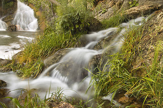 Ricky Barnard - Turner Falls