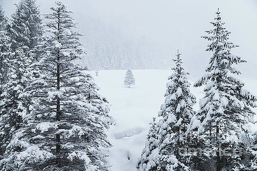 Winter Landscapes by Travel and Destinations - By Mike Clegg