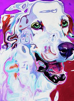 61 Dog by Nixo by Nicholas Nixo
