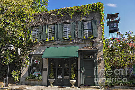 Dale Powell - 61 Queen Street in Charleston