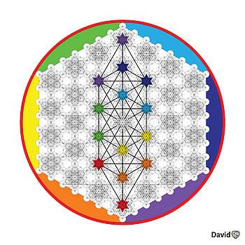 64 Tetra Chakra Activation Grid by David Diamondheart