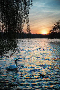 Beautiful vibrant Spring sunrise over calm lake in English count by Matthew Gibson