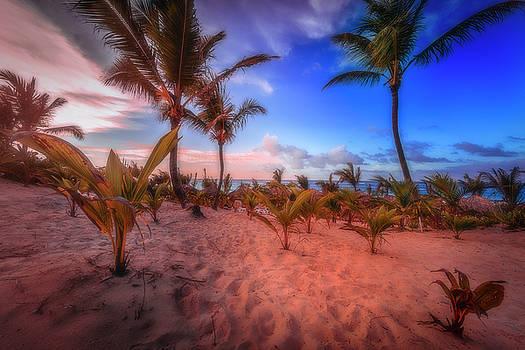 Dominicana Beach by Peter Lakomy