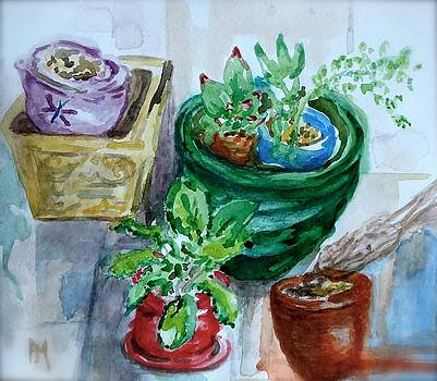 7 Pots on the Porch by Pete Maier
