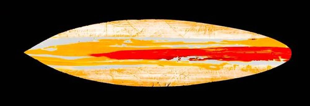 Salty Surfboard  by Barry Knauff