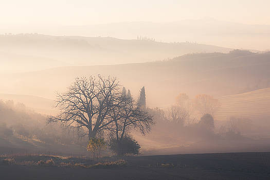 Sunrise at countryside landscape by Nickolay Khoroshkov