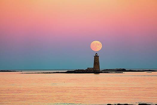 Super Moon 2016 by Robert Clifford
