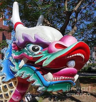 Traditional Dragon Boats in Taiwan by Yali Shi