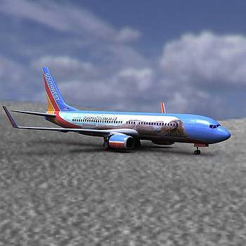 737 with SI Coloring by John Hoagland